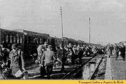 transport of Jews from Austria do Kielce