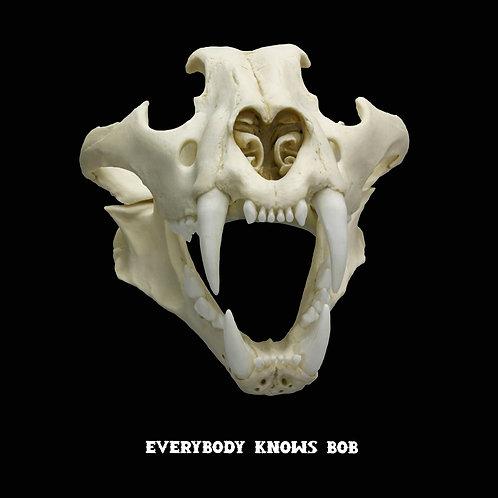 Reservation: Siberian Tiger Skull