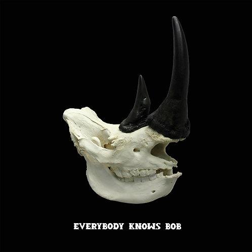 Reservation: White Rhino Skull