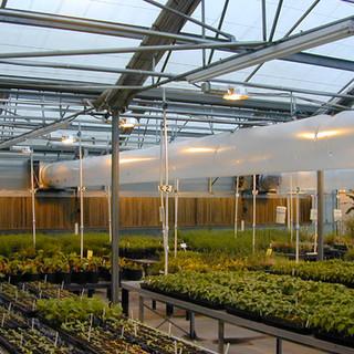 Noble_Greenhouse Interior 1-Small.jpg