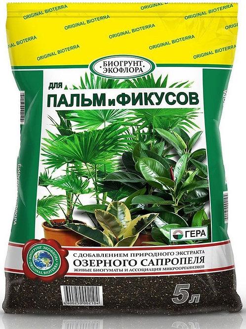 Биогрунт для пальм и фикусов 5л