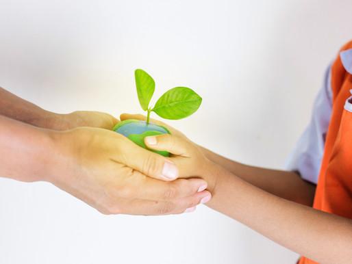 O Plástico e a Sustentabilidade