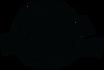 LogoFilmawkiCzarnePNG.png