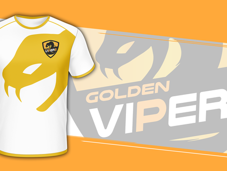 OUR NEW GOVI ESPORTS JERSEY