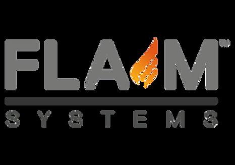 logo_partner_flame.png