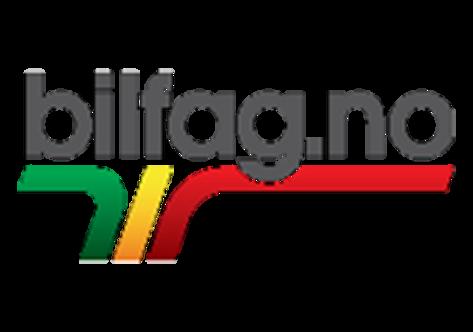 logo_partner_bilfag.png