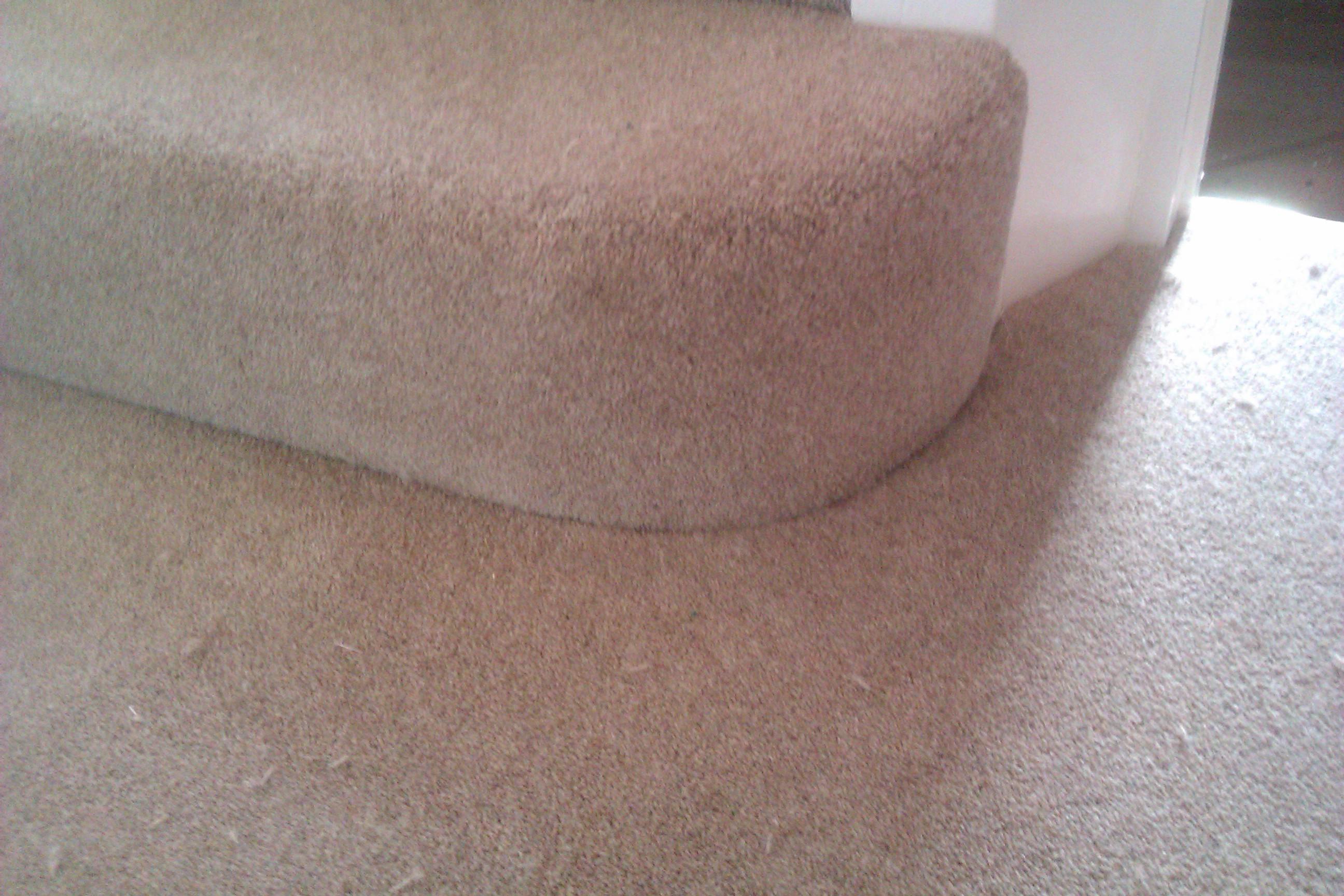 Bullnose Bottom Step