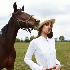 Bara_horse_cover