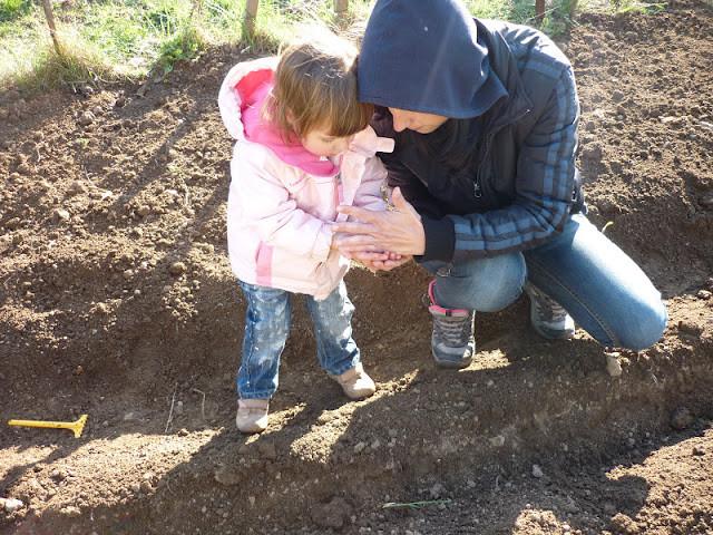 Ültetés apával
