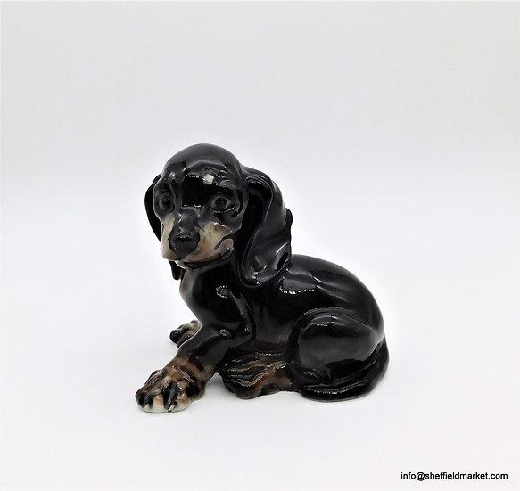 Rosenthal - cucciolo di cane  Bassotto - G. Kuspert  1909