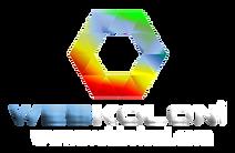 büyük logo.png