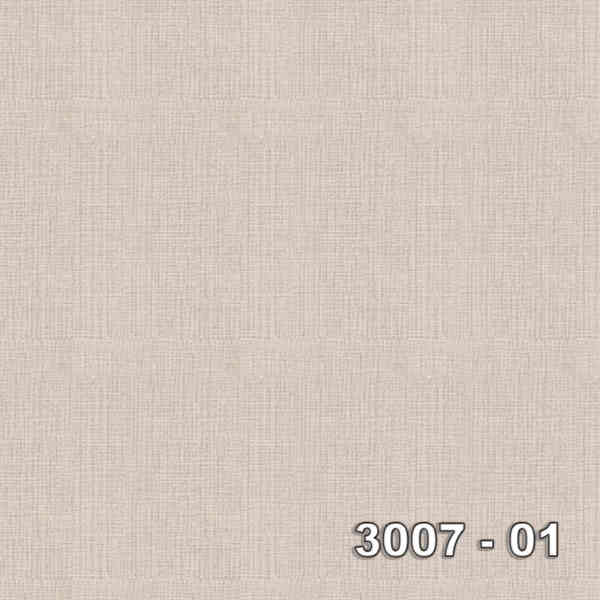 3007-01
