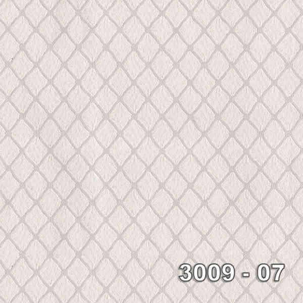 3009-07
