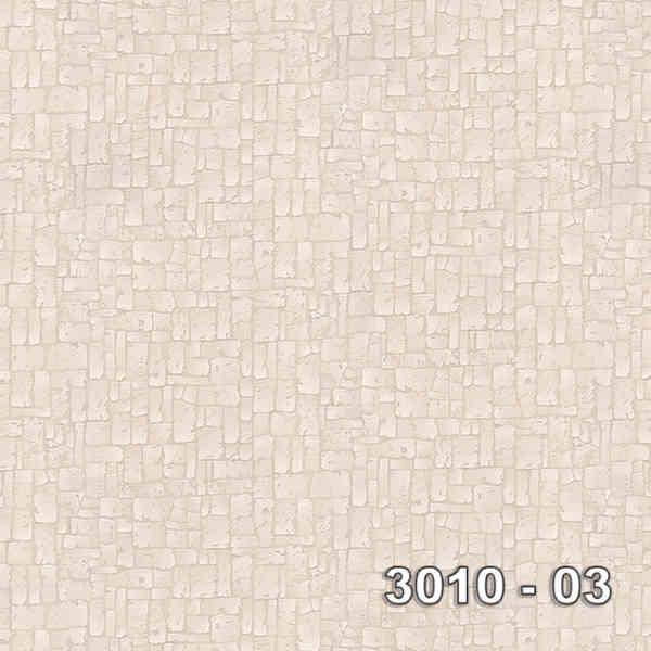 3010-03