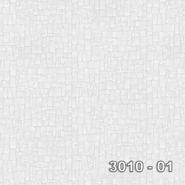 3010-01