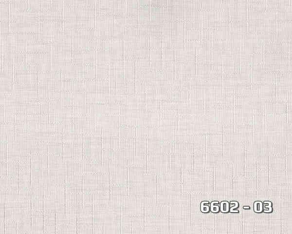 6602_03
