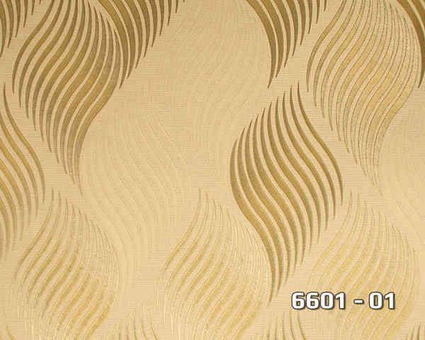 6601_01