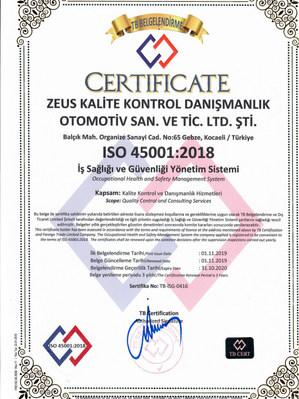 ISO 45001 Ltd.jpg