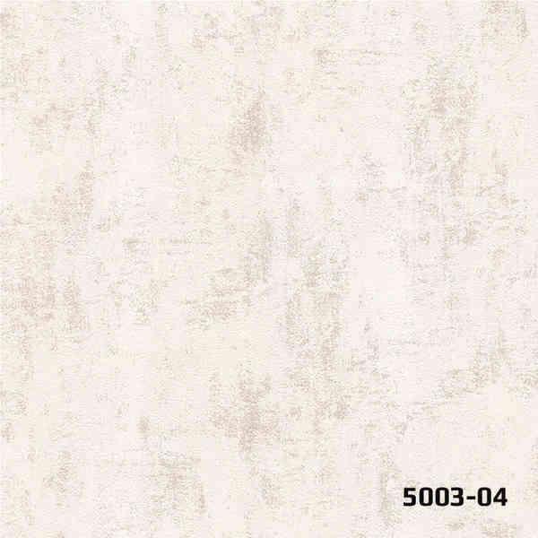 5003-04