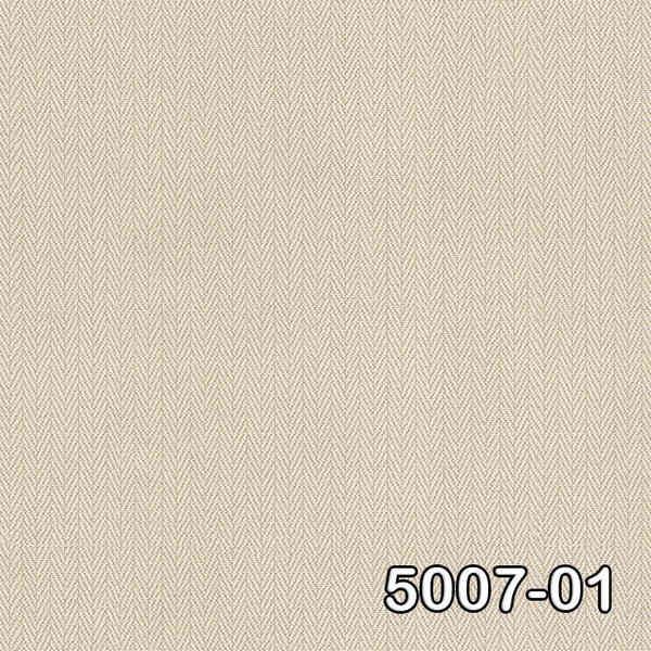 5007-01