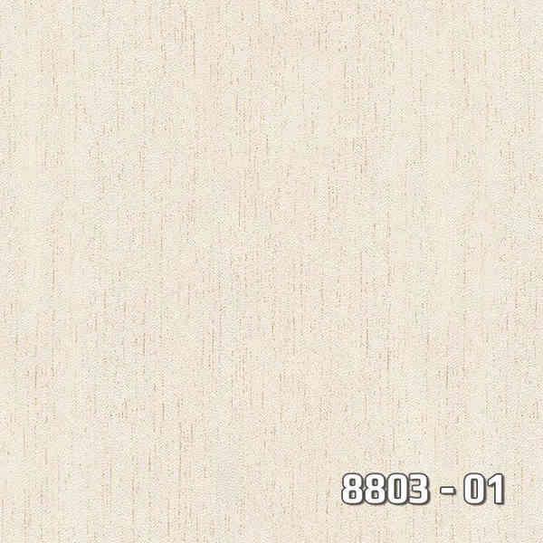 8803-01