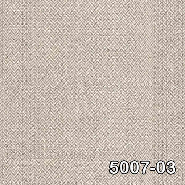 5007-03