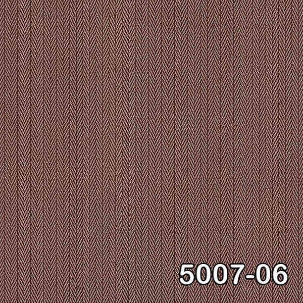 5007-06