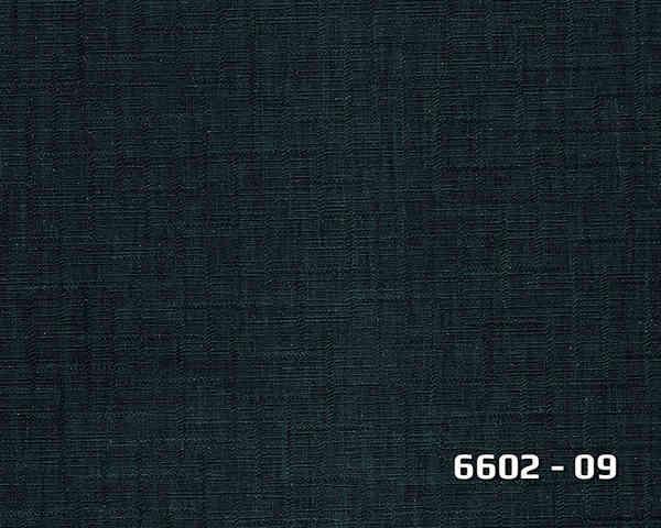 6602_09