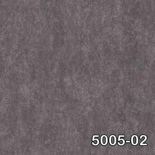 5005-02