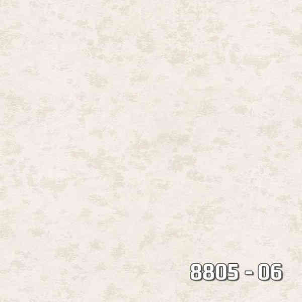8805-06