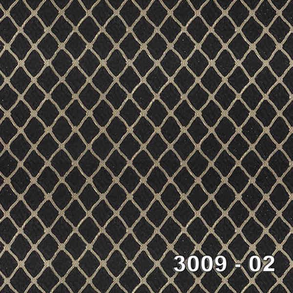 3009-02