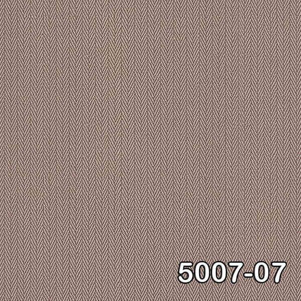 5007-07 (1)