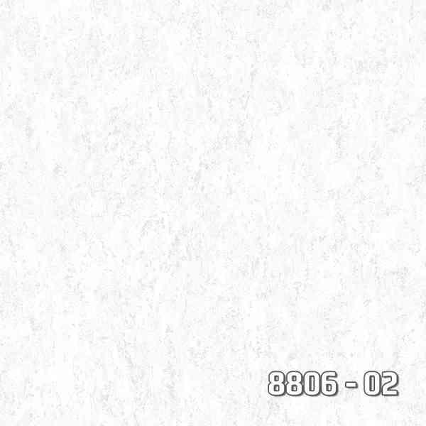 8806-02
