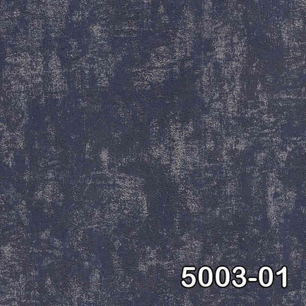 5003-01