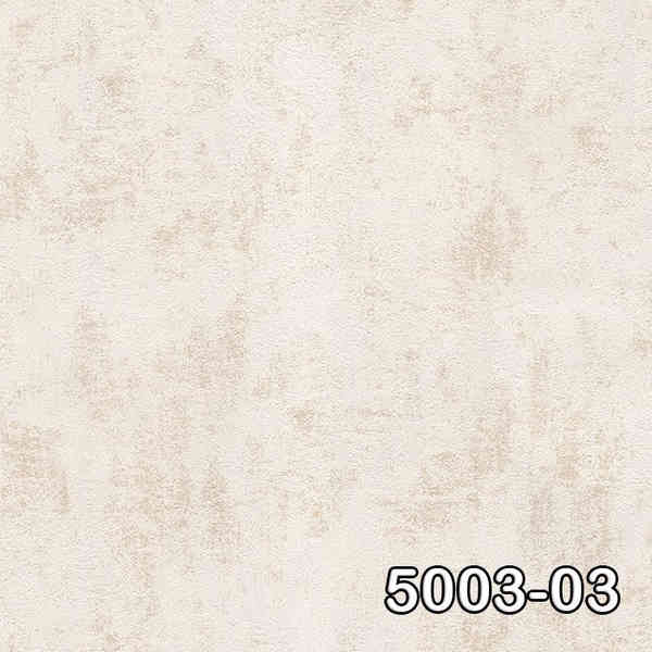 5003-03