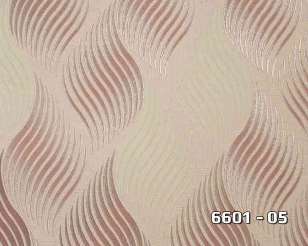 6601_05