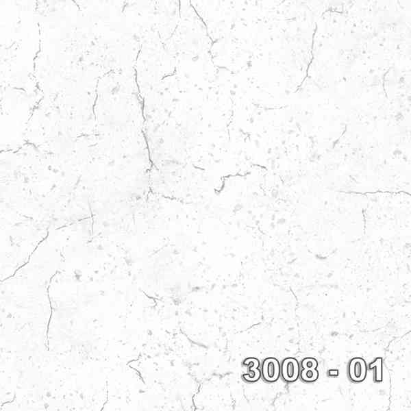 3008-01