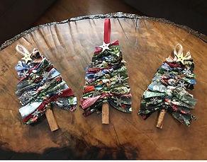 WP Cinnamon tree pic.jpg