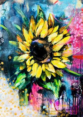 Solar Bloom