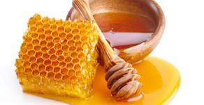 Il miele, dono di vita e salute