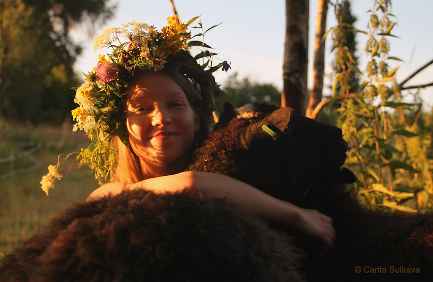 Kuvassa nuori nainen iso kukkaseppele päässään halaa hymyillen leveästi lammasta kultaisessa ilta-auringossa kesäiltana.