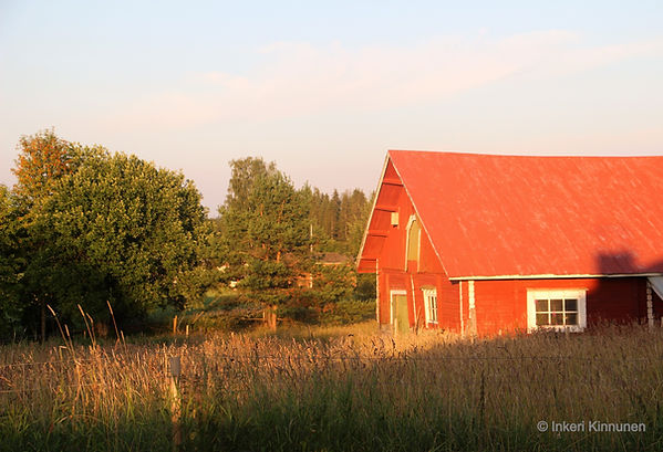 Pirteän Pässin punainen hirsilampola ilta-auringossa kesällä