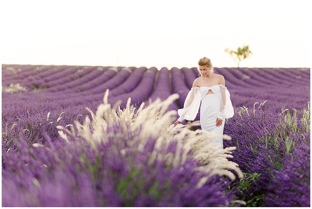 Photo de la mariée dans les champs de lavande au coucher du soleil. La mariée caresse les fleurs de lavande avec sa main.