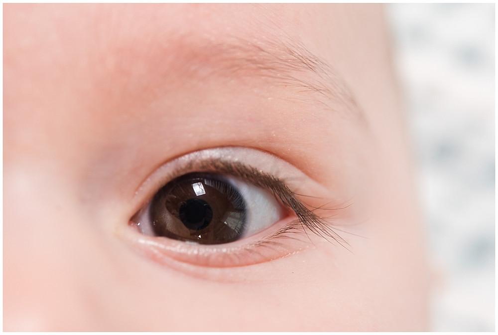 Cette photo est un zoom sur l'œil d'un bébé. Le bébé a les yeux marrons. Son œil est grand ouvert. Cette photo a été prise par un photographe professionnel lors d'une séance photo bébé 6 mois en studio. Le Studio Life Stories se trouve près de Louviers, dans l'Eure.