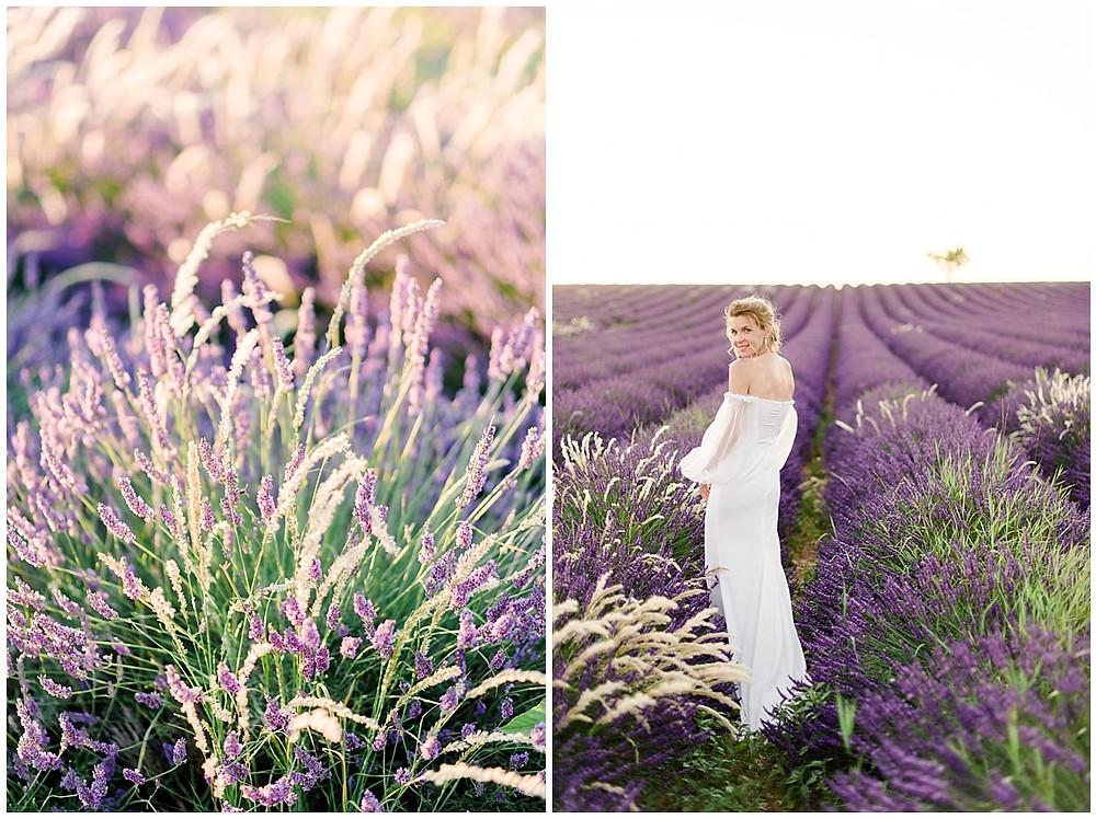 Photo de la mariée de dos dans les champs de lavande au coucher du soleil.