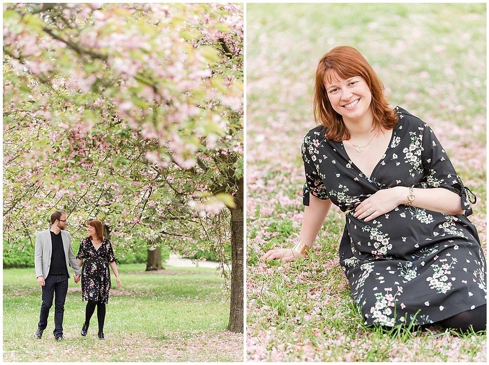 Lors d'une séance photo de grossesse sous les cerisiers en fleurs au Parc de Sceaux, les futurs parents marchent vers le photographe.