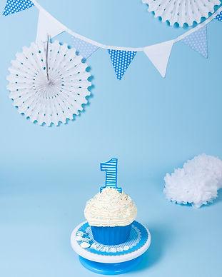 photographe-smash-the-cake-rouen- (19).j