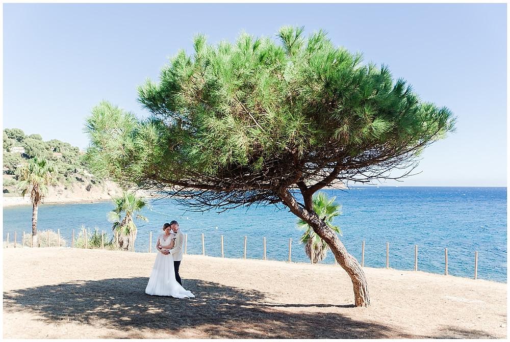 Photo de couple à Saint-Mandrier-sur-Mer : les mariés s'enlacent à l'ombre d'un pin, avec la mer en arrière-plan.