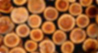 九州の国産木材 | 九州・福岡のログハウスキット