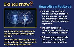 Heart-Brain Factoids.jpg
